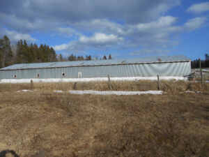 Barn and Land forsale