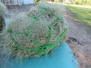 Small Square grass bales