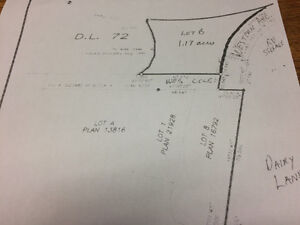1 acre lot in Williams Lake