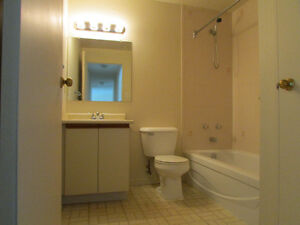 BEAUTIFUL 2 BD. APT.AVAILABLE DEC. 1 INCL. 6 APPLIANCES Kitchener / Waterloo Kitchener Area image 5