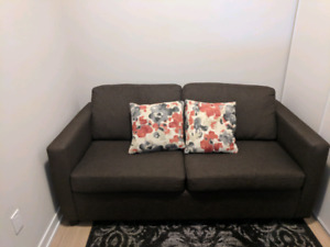 Couch with Pull out Mattress