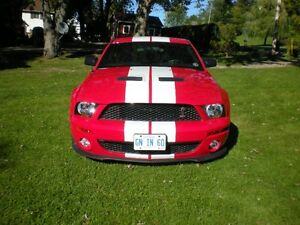2008 Ford Mustang Shelby Coupe (2 door) Kawartha Lakes Peterborough Area image 6