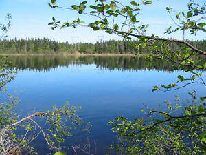 Large Lots on the Upper Humber River-Perry Butt-NL Island Realty