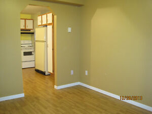 Bright 1 Bedroom in Paradise St. John's Newfoundland image 1