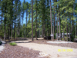 Mabel Lake Enderby Golf Lot