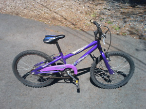 "Girl's 20"" Bike - Norco"