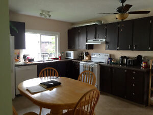 Furnished basement rental with a private washroom!