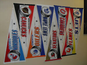 NEW PRICE -  NHL Hockey Pennants - collection of 24