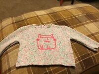 Next cat jumper. Age 1.5-2 yrs