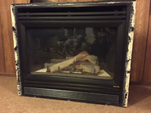 Gas Fireplace Heat-n-Glo with manual