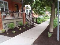 Landscaping - Garden Maintenance - Cleanups - Capital Yard Care
