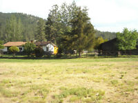 Acreage For Sale In Oliver