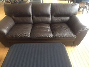 Leather Couch Set (2 piece)