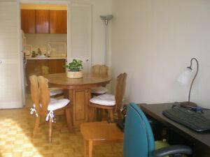 1-bedroom apart for sublet in downtown, Spring Garden Dec14-Apr1