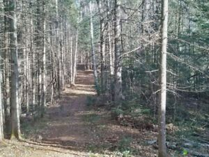 Land for sale -  Terrain a vendre - Morin-Heights