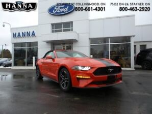 2019 Ford Mustang EcoBoost Convertible  Automatic