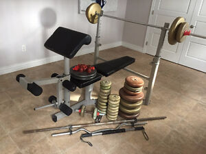 proform weight bench, bars and weight