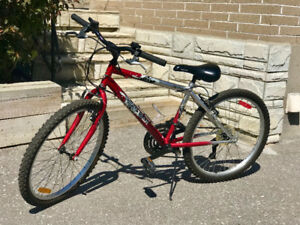Youth Bicycle - Near New Condition