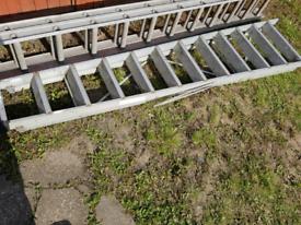 Large step ladders