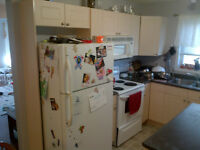 Dishwasher, Stove, and Fridge need to go