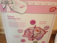 Deluxe owl play gym (girls)
