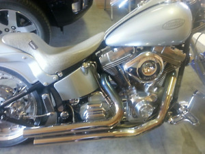 2001 Harley Davidson Softtail