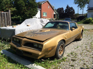 1978 T/A......special edition...4spd..6.6t/a