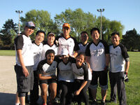 Softball - Coed,  Don Mills