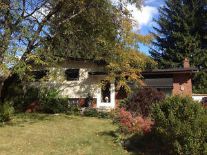 Great Summer Sublet 4 Bedroom House Available!!!