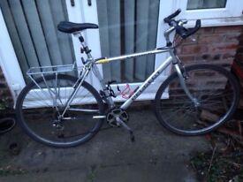 Stolen Isla bike and men's Peugeot bike (Felixstowe) REWARD