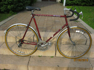 """""""CCM Carrera 12 Gears Excellent Condition """""""