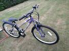 Optima Safari Bicycle