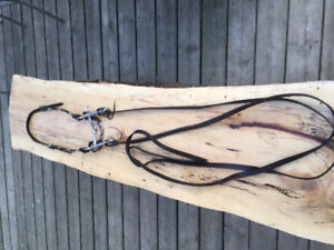 Leather bridle with bit