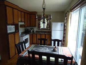 Maison à vendre 2235, ch des Petits-Fruits, St-Henri de Taillon Lac-Saint-Jean Saguenay-Lac-Saint-Jean image 7
