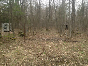 1708 Trader Cowan Rd 100'x'150 building lot on Township road