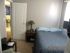 New Furnished Room For Rent