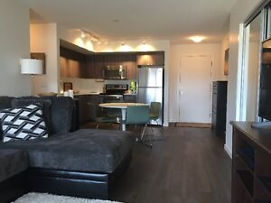 Summer rental apartment close to university and airport