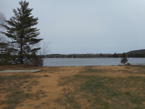 Waterfront Lot Ready for your Retirement Dream Home or Cottage Kawartha Lakes Peterborough Area image 8