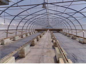 18,000 sq/ft of greenhouses on 1.4 acres for rent or for sale