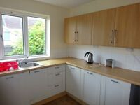 Two Double Rooms in Four Bedroomed, Professional House Share in Mountpleasant