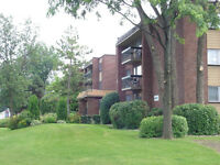 DDO - 1 & 2 Bedroom apts. Studios also available