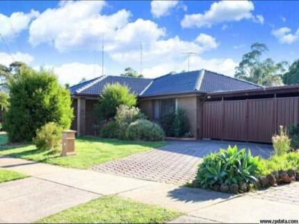 Large Werribee House for rent with Bar & Pool