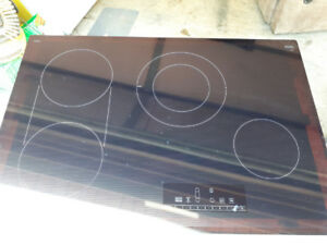 Glass top touch screen stove top