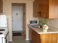 Large renovated 1bdr available on August 1st - West End