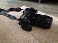 Sony a77 camera NEED TO SELL FAST ON SALE!!!!!!