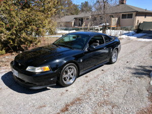 99 Mustang GT Supercharged