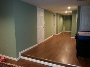 Home Renovation & Addition - Basement Finishing London Ontario image 5