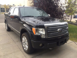 2010 Ford F-150 SuperCrew Platinum - Lady Driven