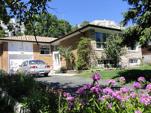 Basement Apartment for rent - Excellent residential area!