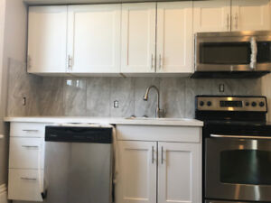 Renovated 2 Bedroom Home in Central Hamilton for Rent